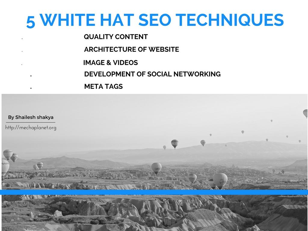 5-most-important-white-seo-techniques 5 Most Important White Hat SEO Techniques